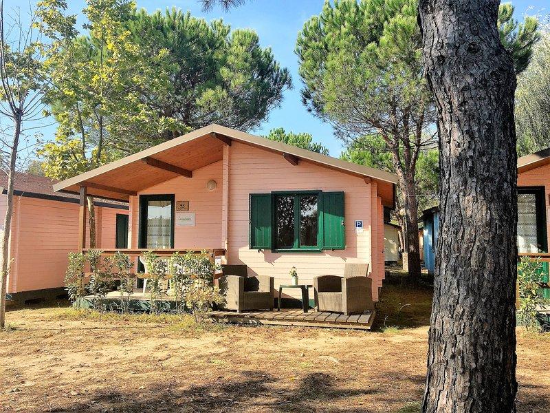 Chalets Tuscany Viareggio, holiday rental in Torre del Lago Puccini