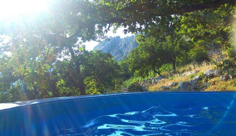 Holiday house with pool, casa vacanza a Borak