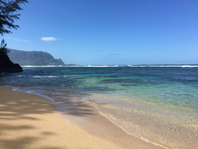 Spacious 4/4.5  House, walk to beaches and enjoy secluded 8 person Hot Tub, vacation rental in Princeville