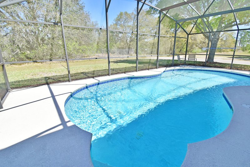 Pool with conservation view