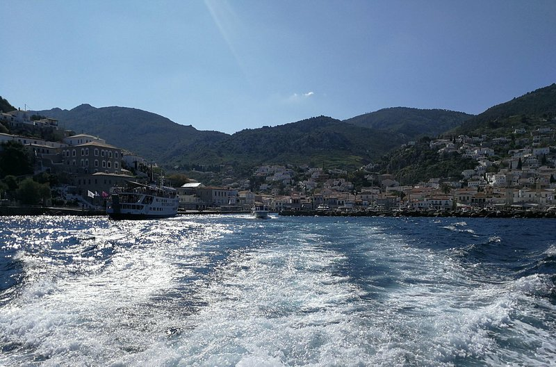 Hydra from sea