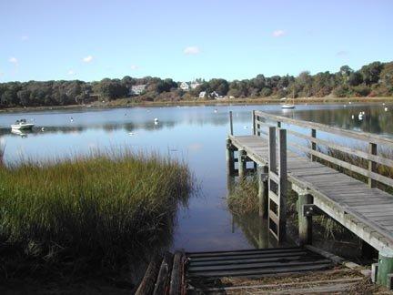 Taylor's Pond