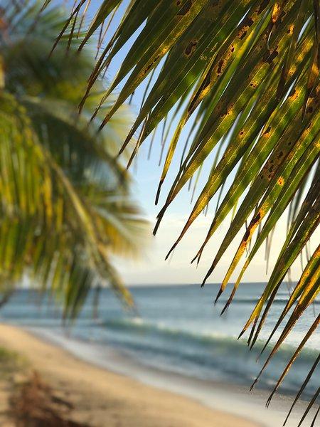 perto da praia em Port Louis