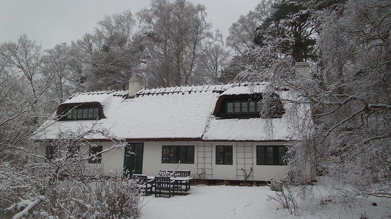 The house, garden, south, winter wonderland