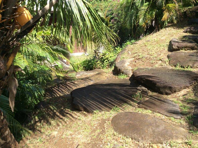 Los árboles de jardín y de coco