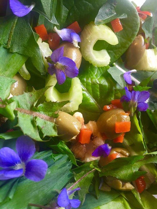 Options disponibles Randonnée Comestibles sauvages!