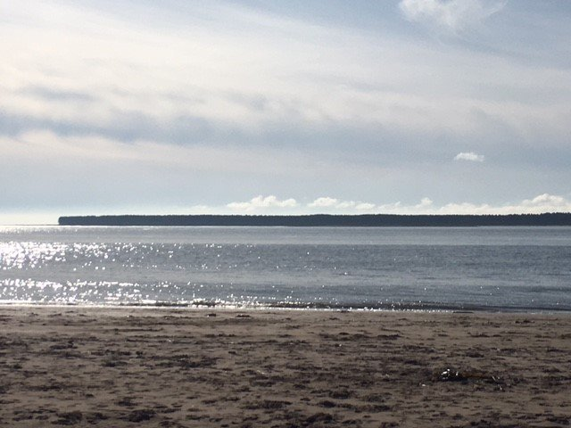 The beach is a few paces away from the apartment and overlooks Tenstmuir Forest