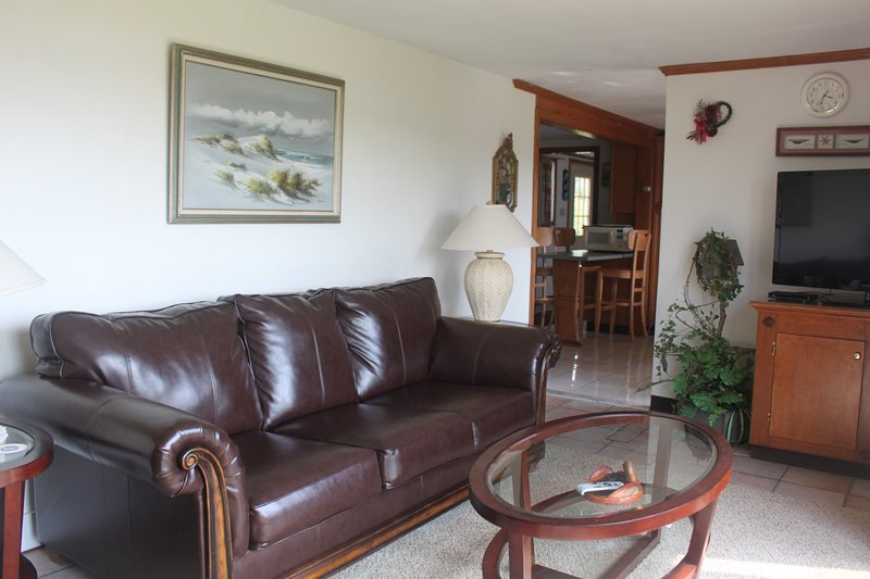Living Room with Flat Screen TV Leather Sleeper Couch