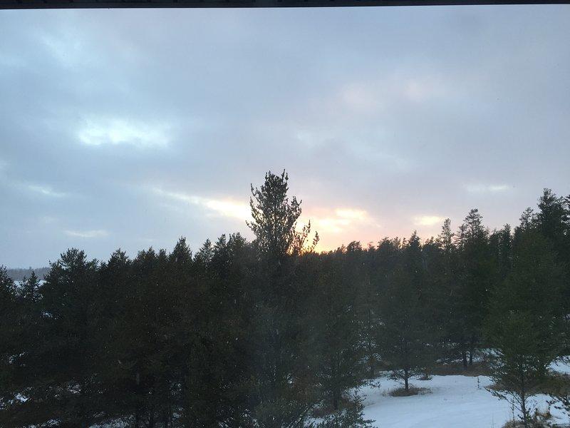 Guardare il tramonto sopra la foresta.