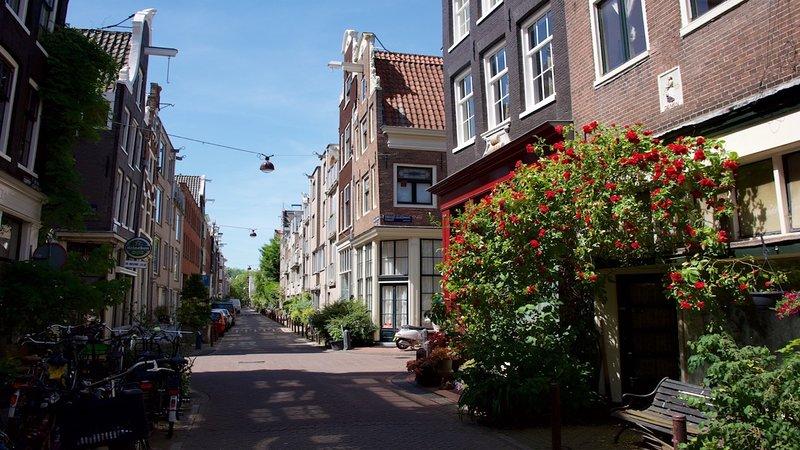 Street view New Leliestraat