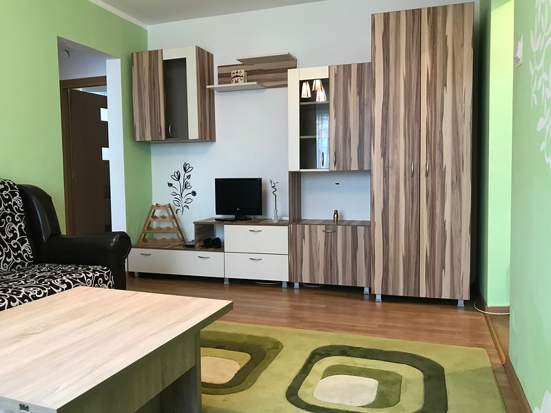 Catchy Apartment Cluj-Napoca, holiday rental in Capusu Mic