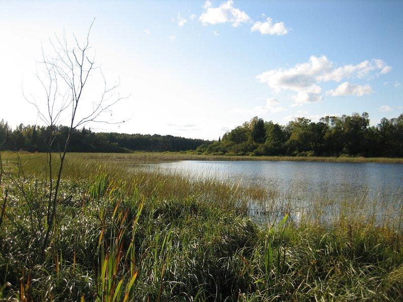 Non è un lago balneabile o spiaggia, ma, un perfetto lago non sviluppate per una pagaia pigro.