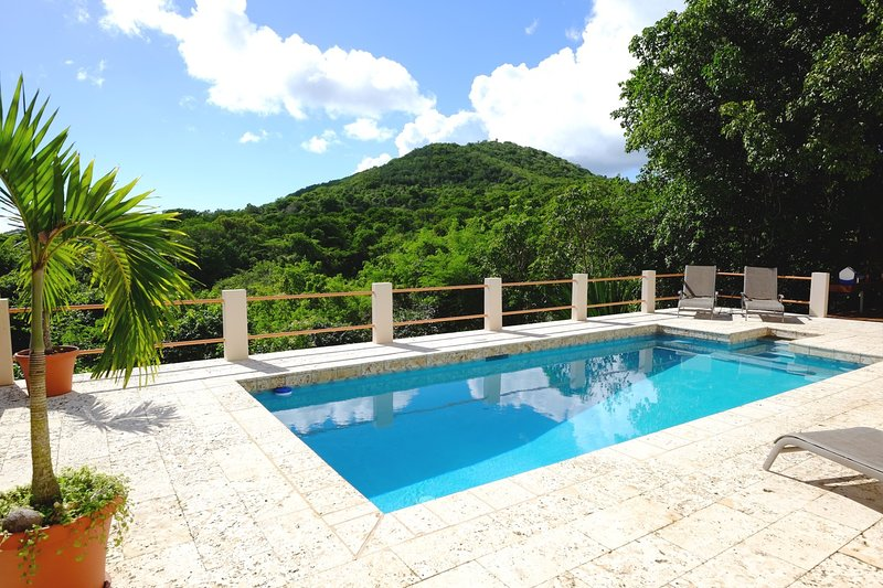 Mountainview Serene dalla terrazza della piscina