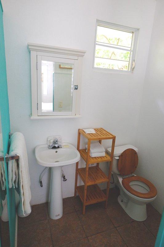 Casita Azul medio baño de interior