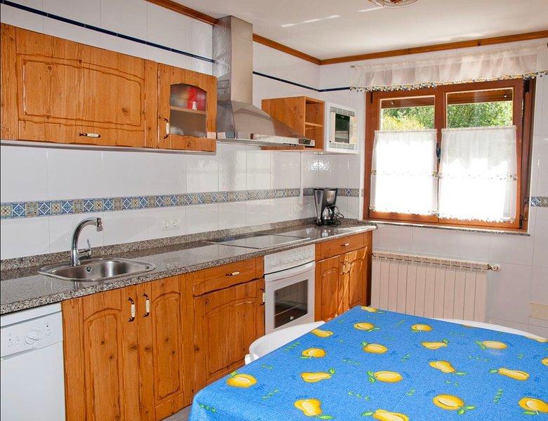 Casa rural, 4pax, alquiler íntegro, salón con chimenea, y jardín con barbacoa, vacation rental in Vegacerneja