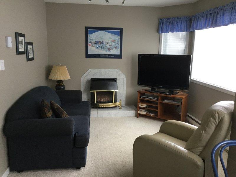 Sala de estar con chimenea y sofá cama