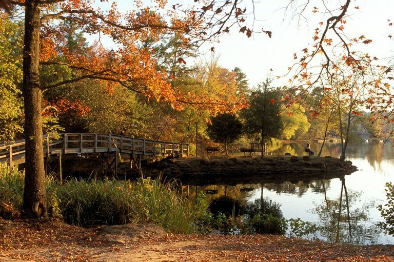 Local Attraction: Tyler State Park