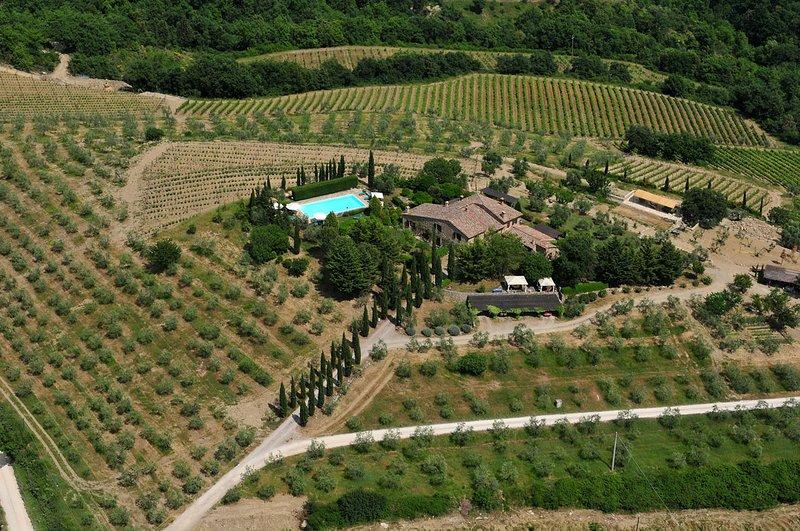 Nosso Farmhouse Azienda Agricola Poggetto só produz Organic Winies Chianti Classico e EVO Oil