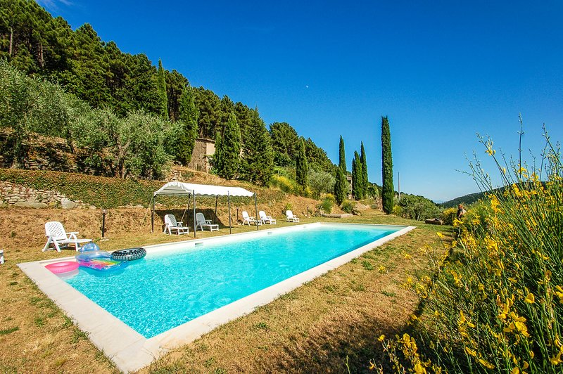 House with private pool near Pisa-Lucca at 1,5km from villag. Panoramic views!!!, holiday rental in Buti