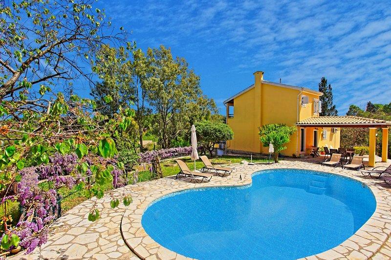 piscine spacieuse belle