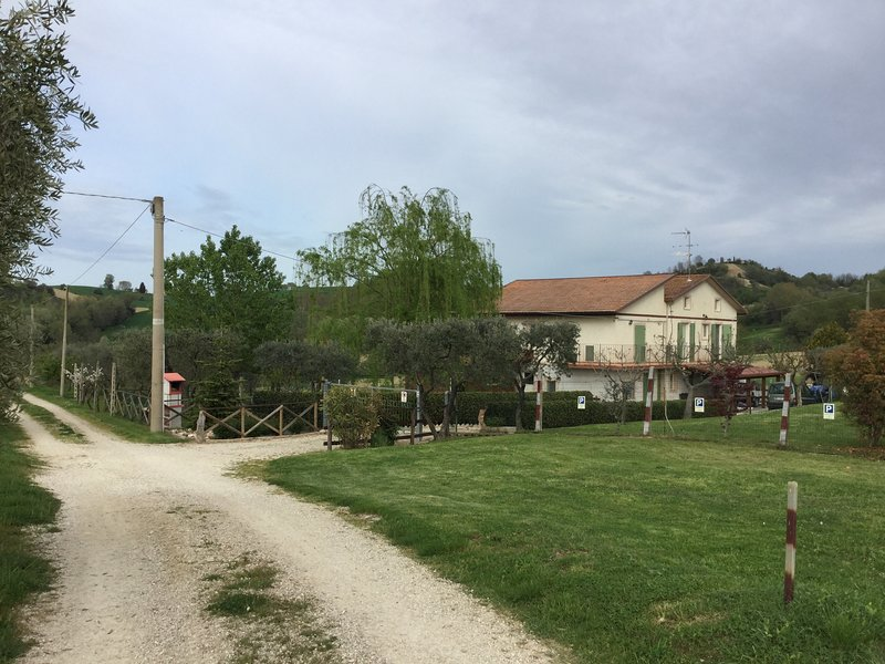 "Panoramic view farm ""The Lone Pine""."