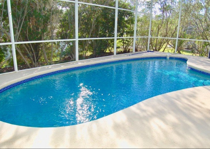 Your own private pool with conservation view