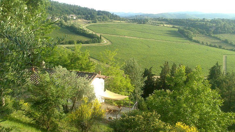 Peaceful cottage with views over Chianti vineyard, Florence in 30 minutes, alquiler vacacional en Pelago