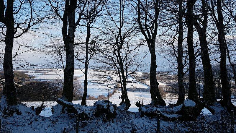 Ein schneebedeckter Blick vom hinteren Feld