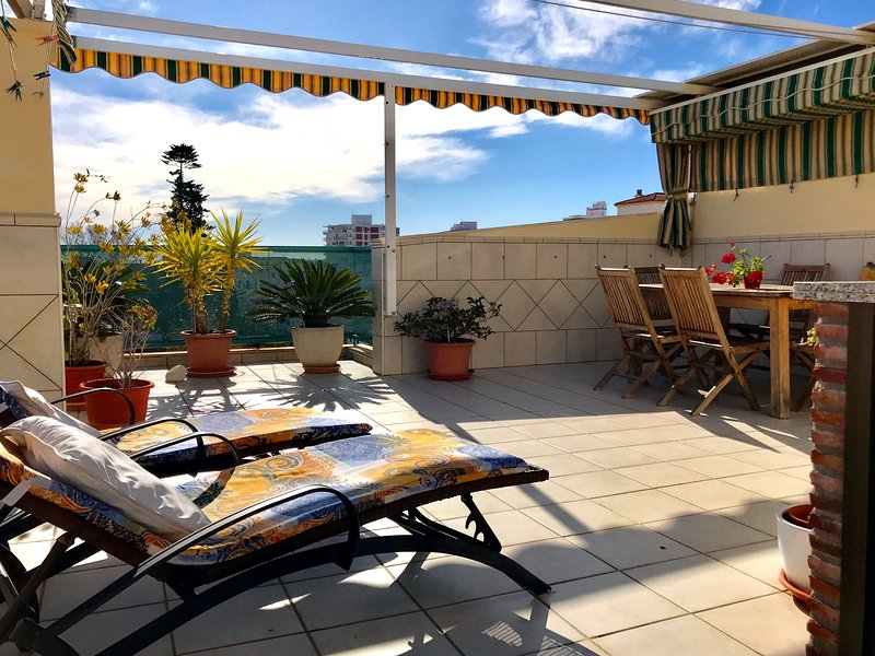 Large and sunny private roof terrace