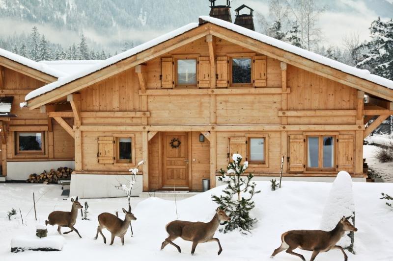 Beautiful chalet Arolles: Top view & sauna, alquiler vacacional en Chamonix