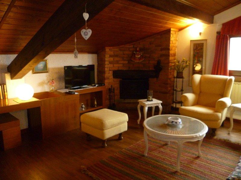 L'Airone Monvalle Lago Maggiore, holiday rental in Travedona-Monate