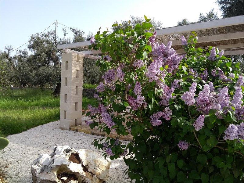 Kleuren van Puglia