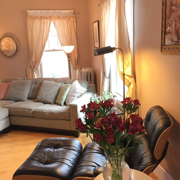 Tranquility in the City, holiday rental in Southbridge