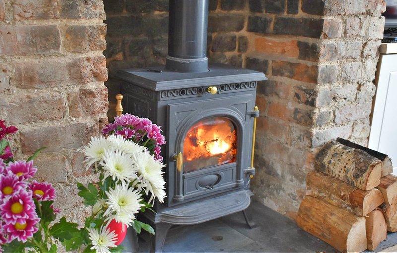 Rilassati nei mesi invernali davanti a questo bruciatore di tronchi funzionante