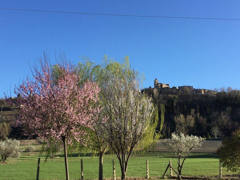 """Agriturismo """"Il pino solitario"""" immerso nella campagna: Camera """"Leopardi"""", vacation rental in Monte Giberto"""