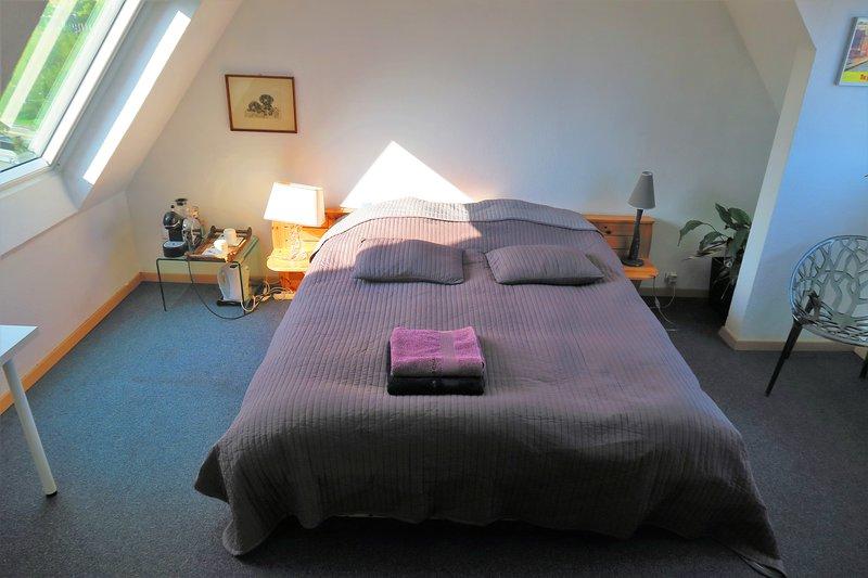 Grande chambre Place de l'Etoile, holiday rental in Legelshurst