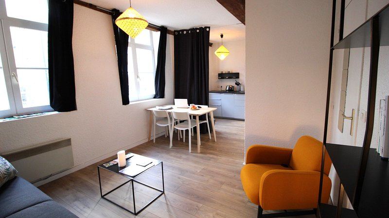 Wonderfull flat in quiet street in the core of old town, vacation rental in Lille