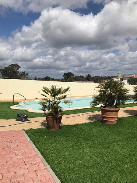 Spacious villa with swimming-pool, holiday rental in Ferreira do Alentejo