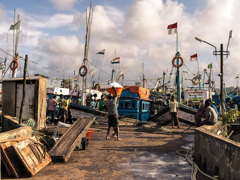 Betim fishing jetty near Panaji, with the boats just in with the fresh catch of the day