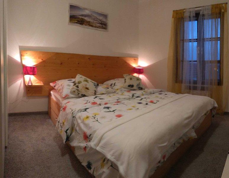 Apartmán v centru města Písek, vacation rental in Bechyne