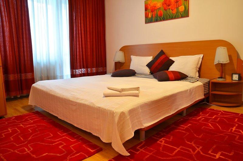 Dorobanti 2 - 2 bedroom apartment, holiday rental in Otopeni