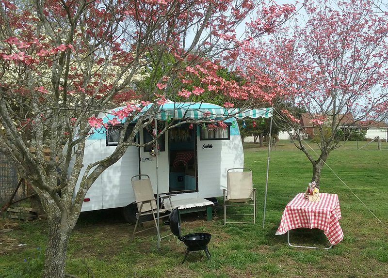 Classic 1963 Serro Scotty Camper, holiday rental in Kernersville