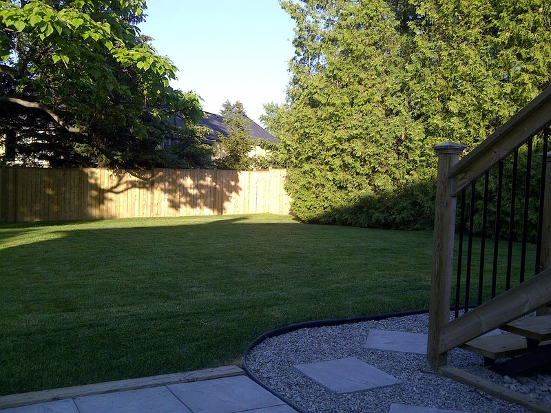 Yard and dining patio