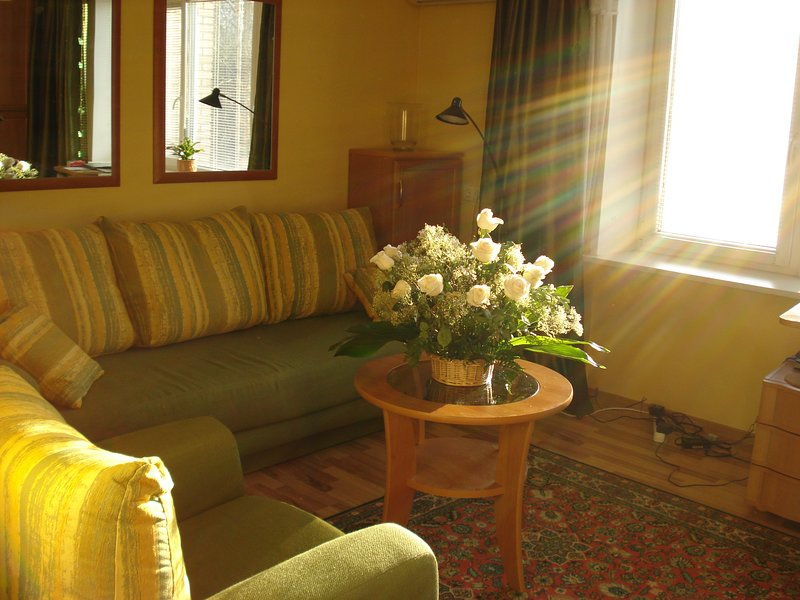 Beautiful Sunny 1 BD Apartment looking at the Park, vacation rental in Strelna