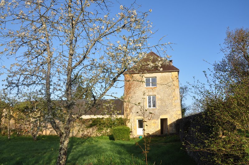 Gite de la Tour de Prunevaux, holiday rental in Varennes-Vauzelles