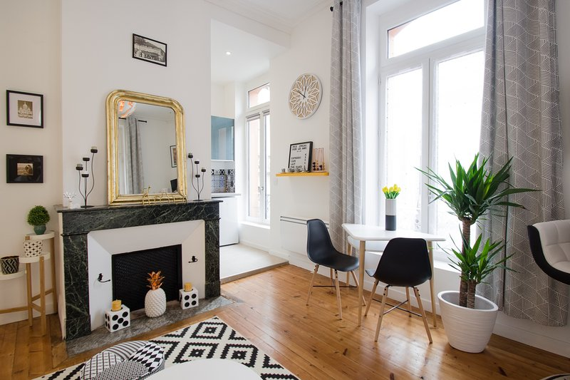 LE SAINT-AUBIN - Magnifique T2 avec terrasse, holiday rental in Quint-Fonsegrives