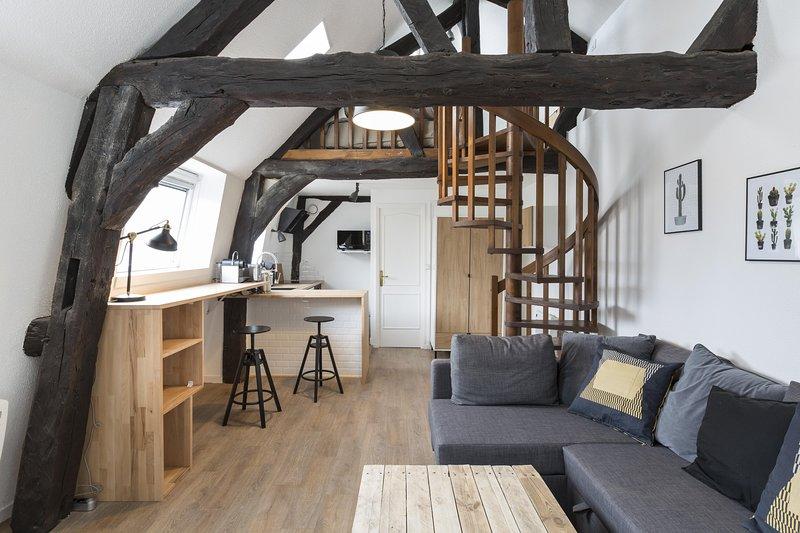 LES LICES - bel appartement de charme rénové et au calme, aluguéis de temporada em Saint-Gregoire