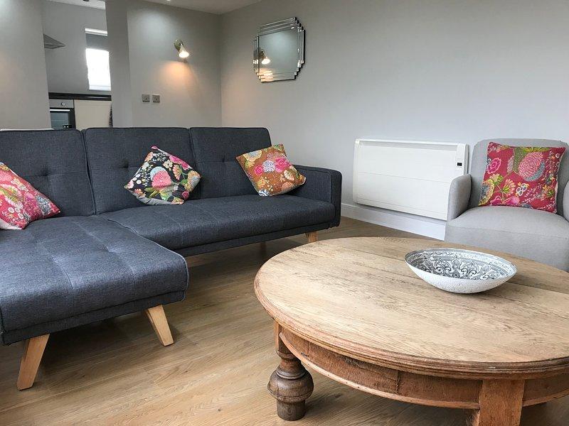 Cothi Bridge Apartments - Towy, holiday rental in Pentrefelin