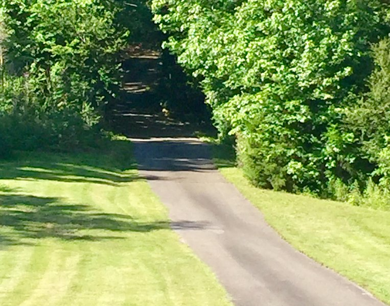 Street view of Wise Acres before heading up the hill to your wooded paradise