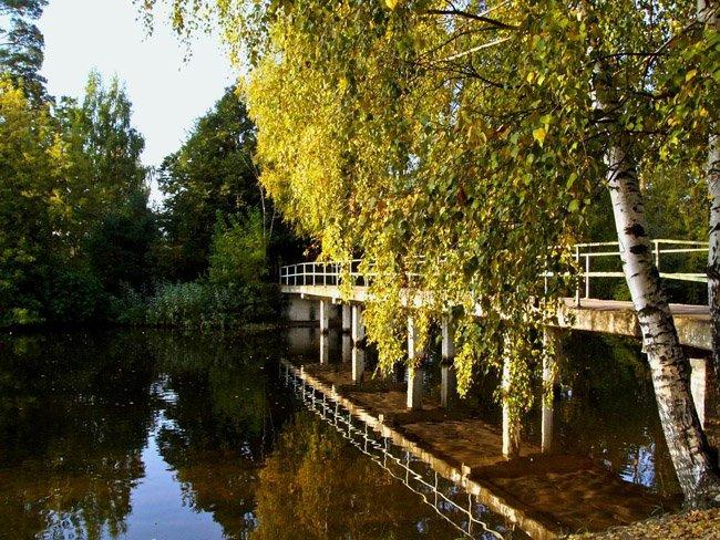 """Silver Forest ( """"Serebryaniy Bor"""") park ligt in de buurt van uw flat"""